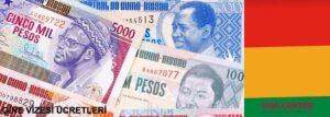 Gine vize ücreti