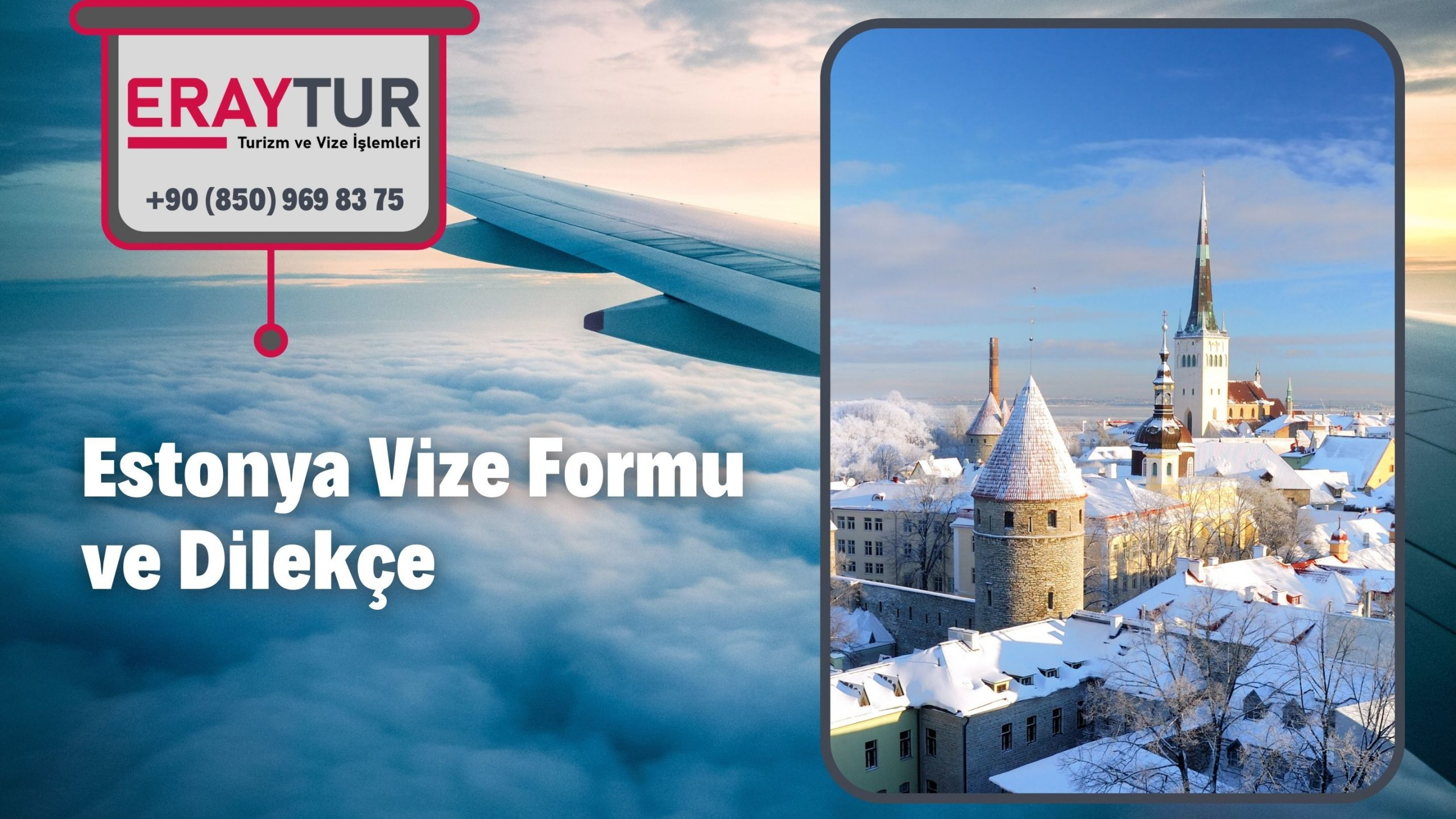 Estonya Vize Formu ve Dilekçe