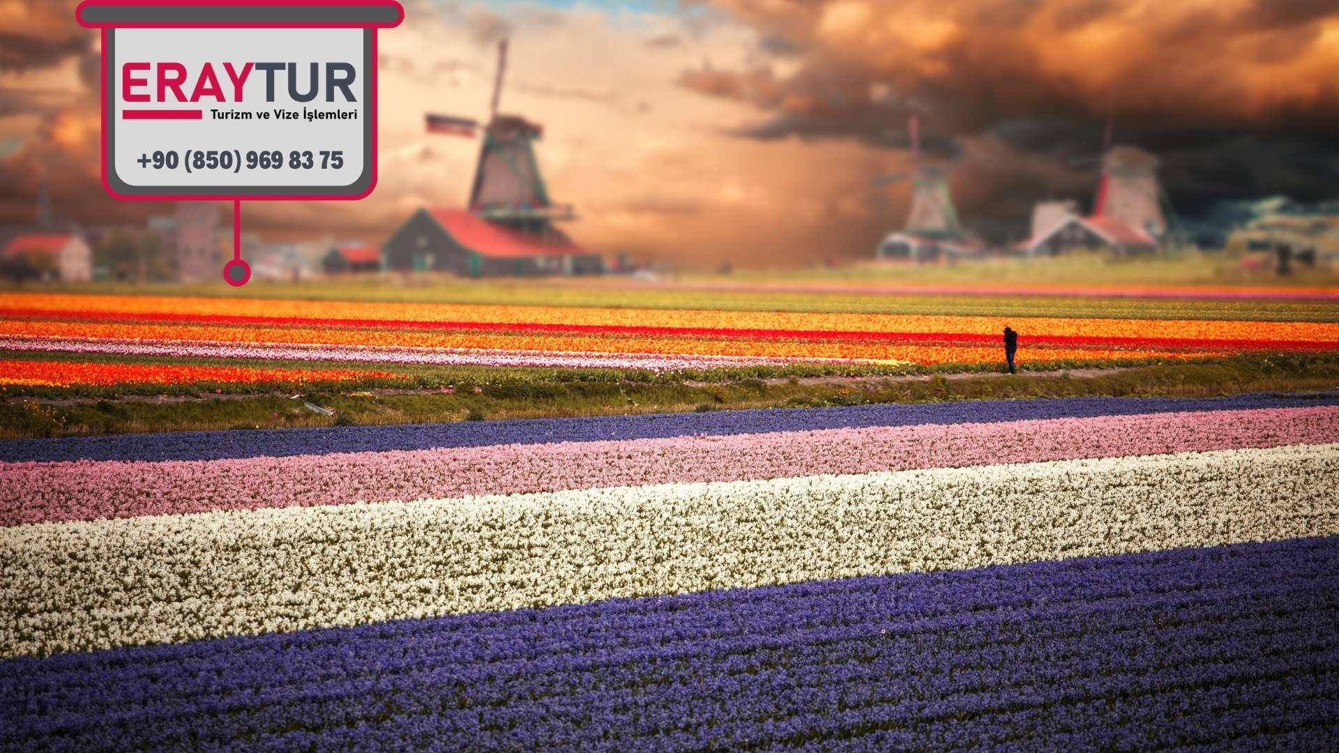 Hollanda Vize Başvurusuna İlişkin Önemli Hususlar