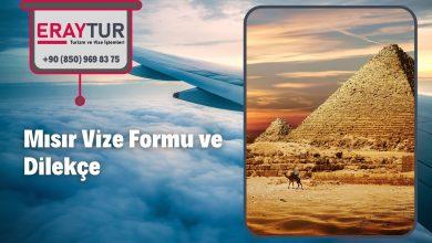 Mısır Vize Formu ve Dilekçe