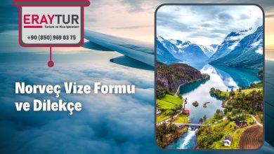 Norveç Vize Formu ve Dilekçe 1 – norvec vize formu ve dilekce 1