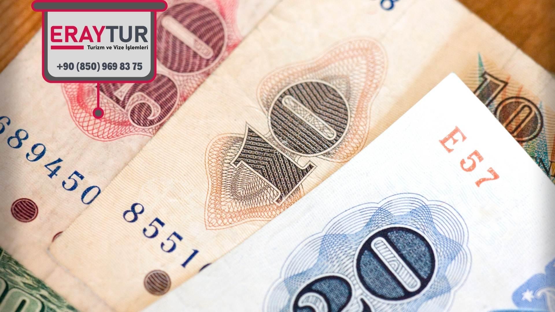 Avusturya Para Birimi